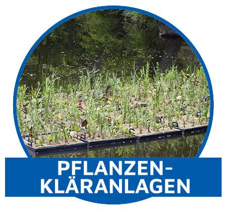 Pflanzen-Anlage-3